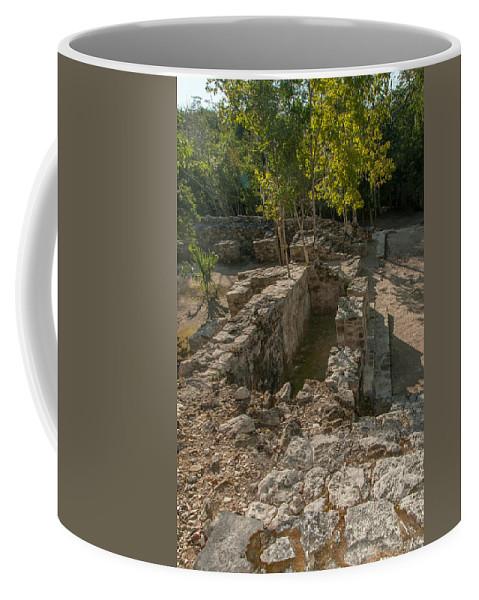 Mexico Quintana Roo Coffee Mug featuring the digital art Grupo Coba At The Coba Ruins by Carol Ailles