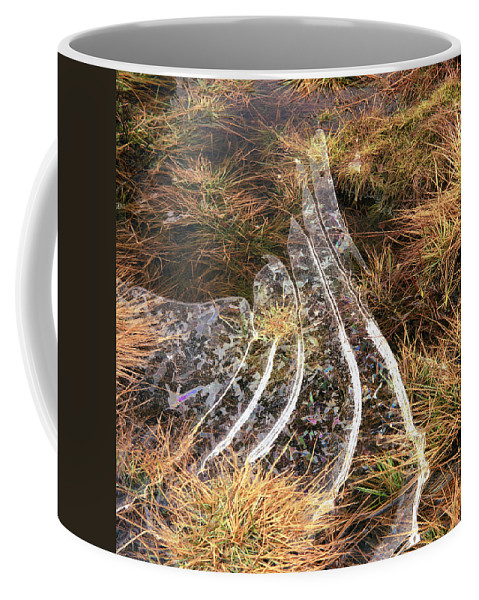 Coffee Mug featuring the photograph 4. Ice Prismatics In Grass 1, Loch Tulla, by Iain Duncan