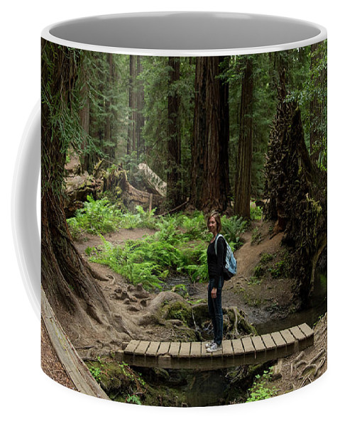 Montgomery Woods State Natural Reserve Coffee Mug featuring the photograph Montgomery Woods State Natural Reserve by David Oppenheimer
