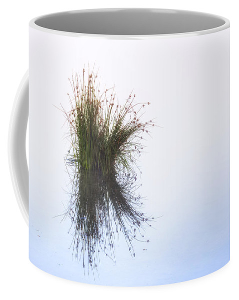 Nature Coffee Mug featuring the photograph Reflection by Joana Kruse