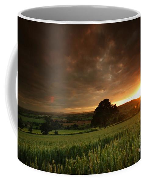 Sunset Coffee Mug featuring the photograph The Sunset by Angel Tarantella