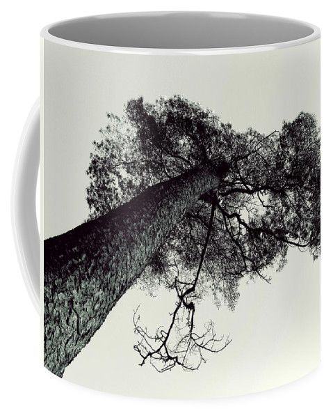 Tree Coffee Mug featuring the photograph Trees And Sky by FL collection