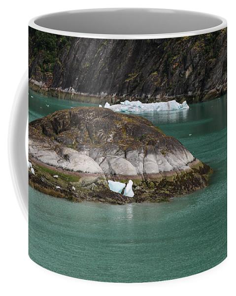 Coffee Mug featuring the photograph Alaska_00047 by Perry Faciana