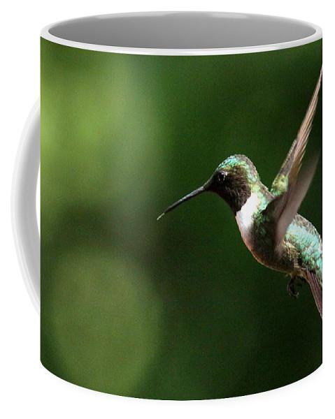 Ruby-throated Hummingbird Coffee Mug featuring the photograph 4753 - Ruby-throated Hummingbird by Travis Truelove
