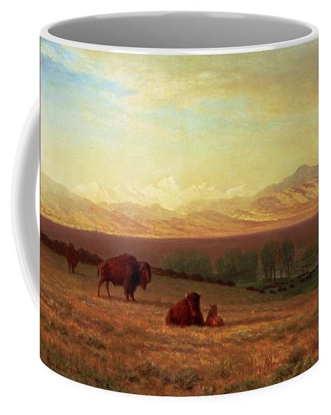 Albert Bierstadt Coffee Mug featuring the painting Buffalo On The Plains by Albert Bierstadt