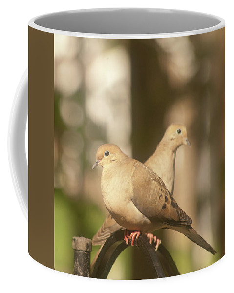 Mourning Dove Coffee Mug featuring the photograph Mourning Dove by Diane Schuler