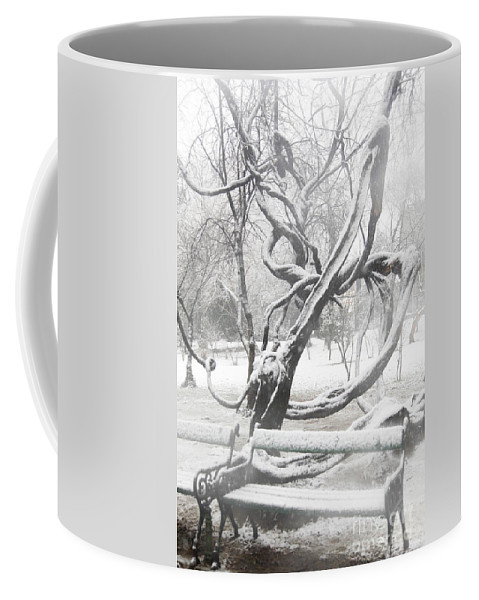 Beauty In Nature Coffee Mug featuring the photograph Park During Heavy Snowfall by Vladi Alon
