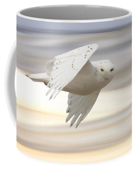 Owl Coffee Mug featuring the photograph Snowy Owl In Flight by Mark Duffy