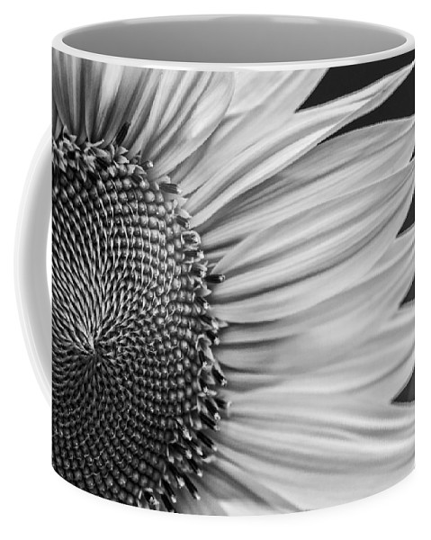 Agriculture Coffee Mug featuring the photograph Sunflower by Paulo Goncalves