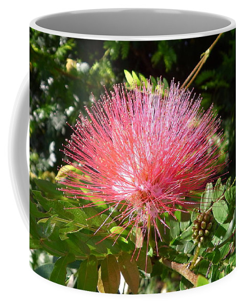 Australia Coffee Mug featuring the photograph Australia - Red Caliandra Flower by Jeffrey Shaw