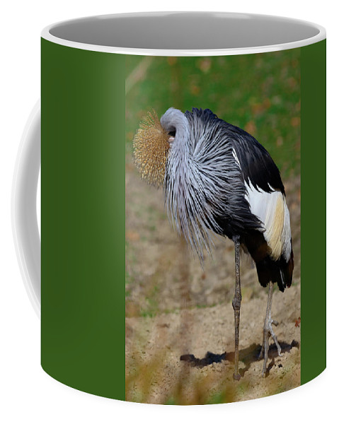 Bird Coffee Mug featuring the photograph Bird by Hristo Shanov