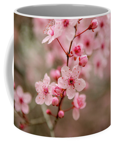 Flowers Coffee Mug featuring the photograph Flowers by Fabio Ferreira
