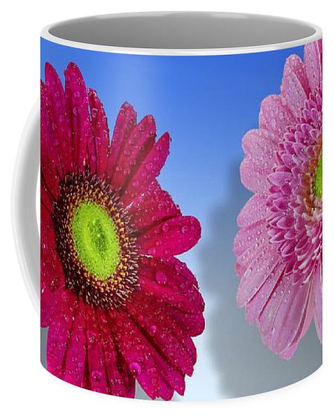 Flower Coffee Mug featuring the photograph Flowers by FL collection