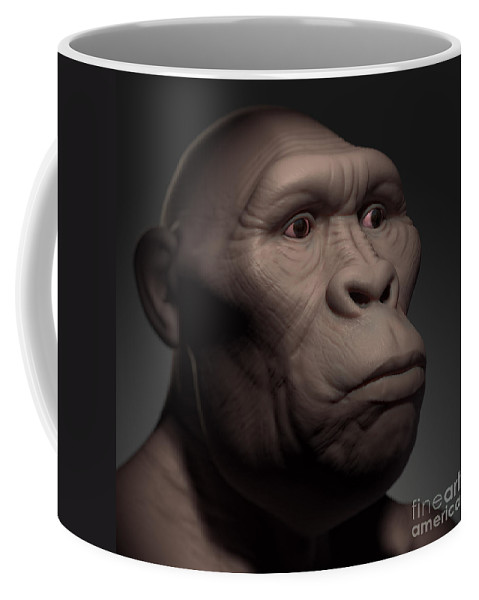 Digitally Generated Image Coffee Mug featuring the photograph Australopithecus by Science Picture Co