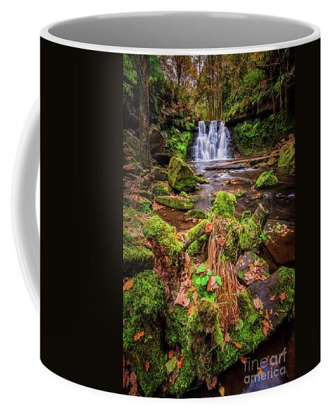 Waterfall Coffee Mug featuring the photograph Goit Stock Waterfall by Mariusz Talarek