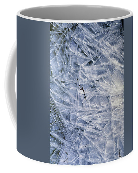 Coffee Mug featuring the photograph 7. Ice Encrustation, Upper West Allen by Iain Duncan