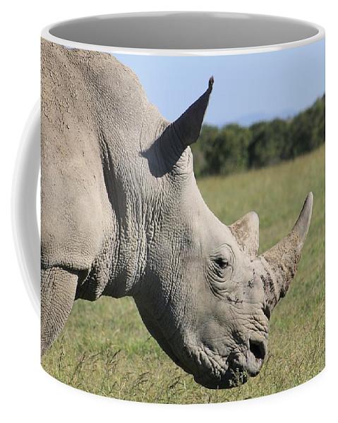Rhinoceros Coffee Mug featuring the photograph Rhino by FL collection