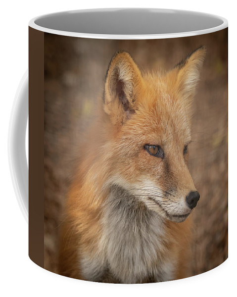 Russianredfox Coffee Mug featuring the photograph Russian Red Fox by David Pine
