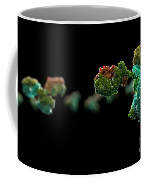 Digitally Generated Image Coffee Mug featuring the photograph Antibody 1igt by Science Picture Co