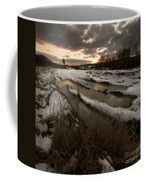 Winter Coffee Mug featuring the photograph The Winter Time by Angel Ciesniarska