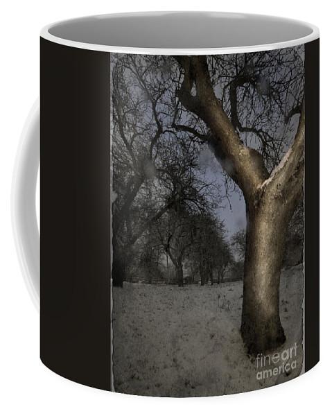 Winter Coffee Mug featuring the photograph The Winter Time by Angel Ciesniarska