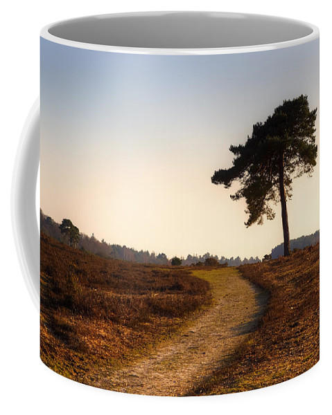 Rockford Common Coffee Mug featuring the photograph New Forest - England by Joana Kruse