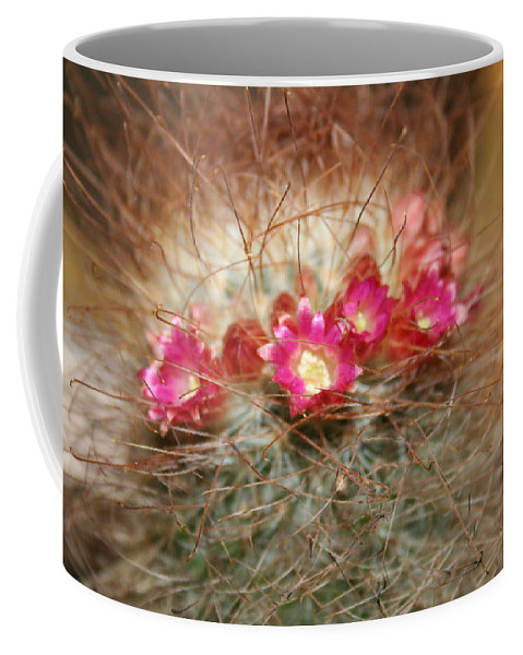 Flowers Nature Coffee Mug featuring the photograph A Beautiful Blur by Linda Sannuti
