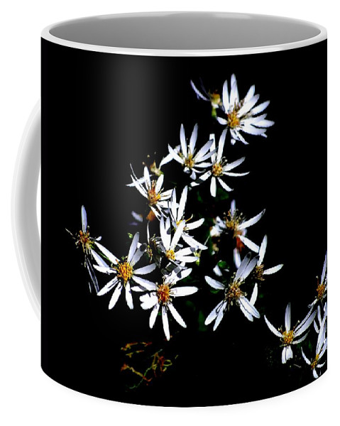Digital Photograph Coffee Mug featuring the photograph A Black And White Study by David Lane