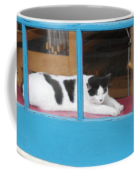 Cat Coffee Mug featuring the photograph A Cats Life by Armand Hebert