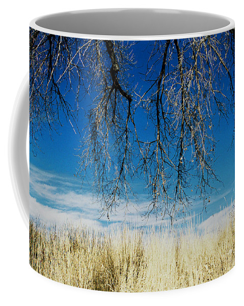 Nature Coffee Mug featuring the photograph A Comfortable Place by Ric Bascobert