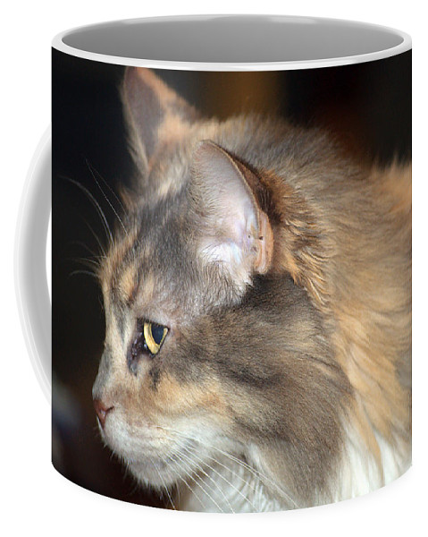 Cat Coffee Mug featuring the photograph A Contemplative Little Princess by Kenneth Albin