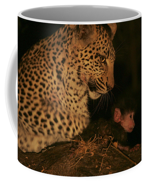 Okavango Delta Coffee Mug featuring the photograph A Day-old Baboon Befriends A Young by Beverly Joubert