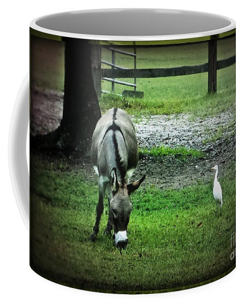 Donkey Coffee Mug featuring the photograph A Donkey And His Bird by Leslie Revels