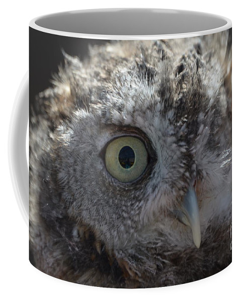 Rescue Coffee Mug featuring the photograph A Eye On You by Jodie Sims