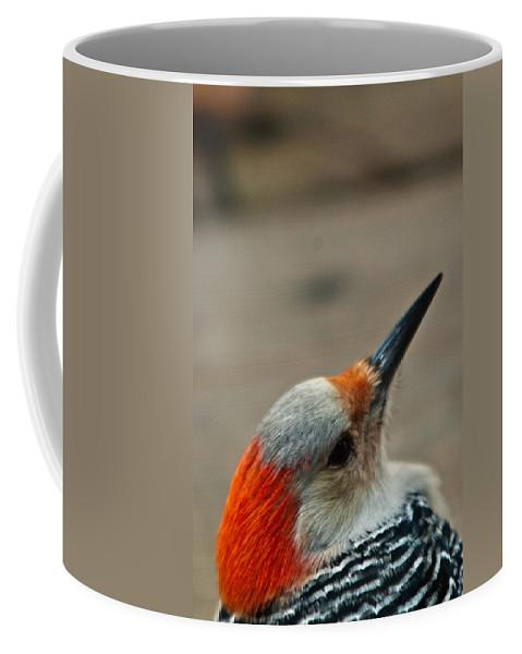 Redhead Coffee Mug featuring the photograph A Firey Redhead by Douglas Barnett