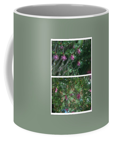 Abstract Coffee Mug featuring the photograph A Flys View Of A Flower by Alwyn Glasgow