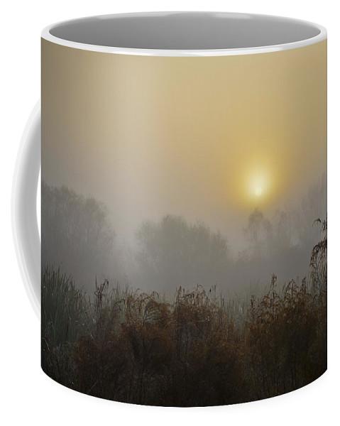 Sunrise On Foggy Morning Coffee Mug featuring the photograph A Foggy Sunrise by Carolyn Marshall