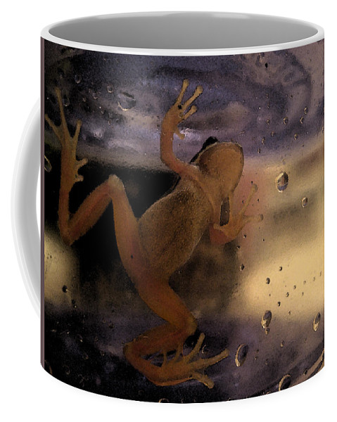 Frog Coffee Mug featuring the digital art A Frogs World by Holly Ethan