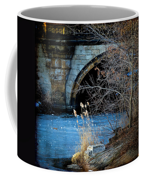 Central Park Coffee Mug featuring the photograph A Frozen Corner In Central Park by Chris Lord