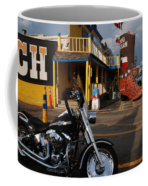 Photography Coffee Mug featuring the photograph A Fun Place by Susanne Van Hulst