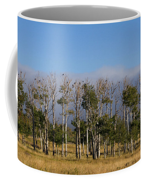 Colorado Photographs Coffee Mug featuring the photograph A Gathering Of Crows by Hulda Benson