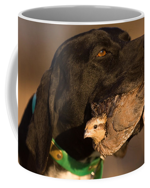 Nobody Coffee Mug featuring the photograph A German Shetland Proudly Holds by Joel Sartore