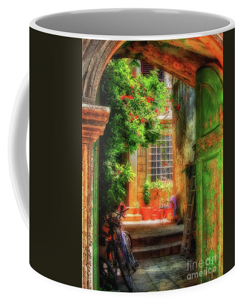 Doorway Coffee Mug featuring the photograph A Glimpse by Lois Bryan