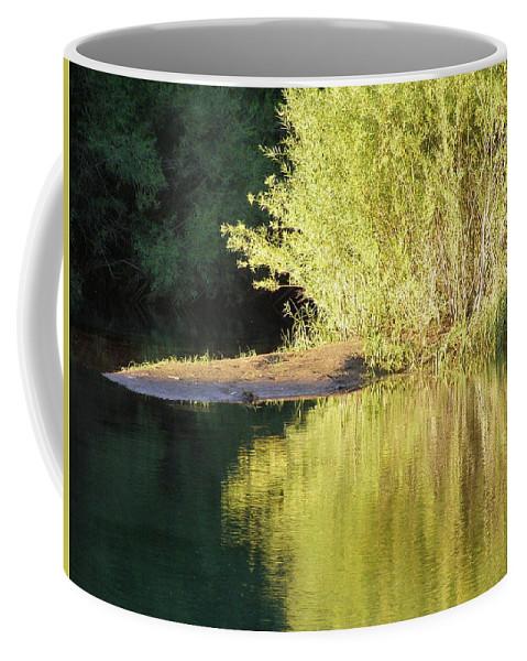 Water Coffee Mug featuring the photograph A Golden Reflection by DeeLon Merritt