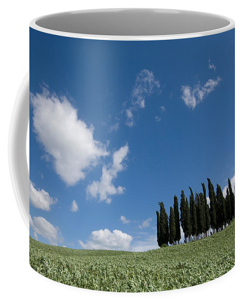 Photography Coffee Mug featuring the photograph A Group Of Cypress Trees Dot A Tuscan by Joel Sartore