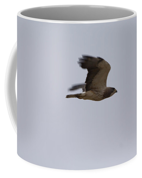 Photography Coffee Mug featuring the photograph A Hawk Near The Charles M. Russell by Joel Sartore