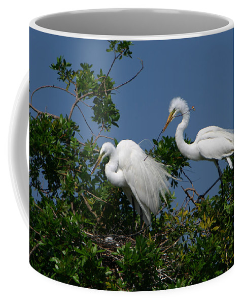 Great White Egret Bird Feathers Animal Wildlife Florida Photograph Photography Coffee Mug featuring the photograph A Helping Beak by Shari Jardina