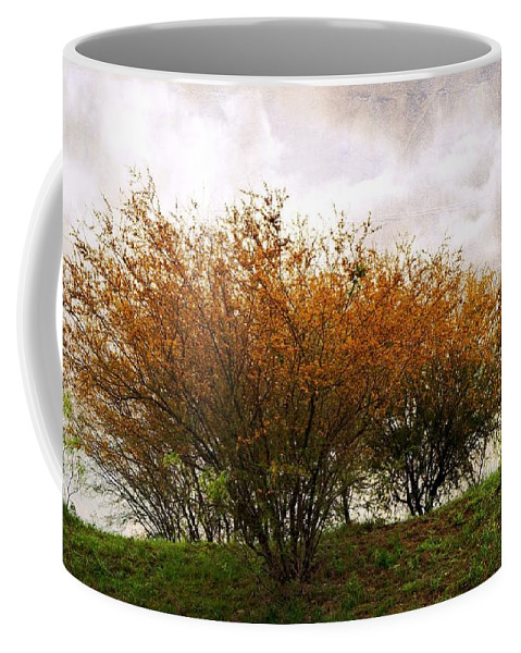 Huisache Coffee Mug featuring the photograph A Huisache Morning by Gary Richards