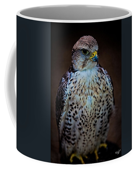 Raptor Coffee Mug featuring the photograph A Lady Of Distinction by Chris Lord