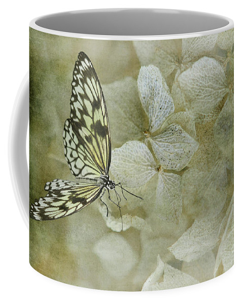 Butterfly Coffee Mug featuring the photograph A Lighter Touch by Lois Bryan